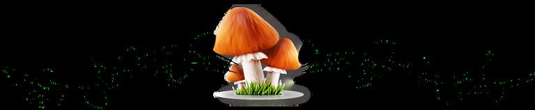 ornament_fungi2.png