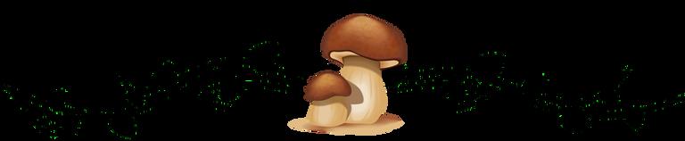 ornament_fungi1.png